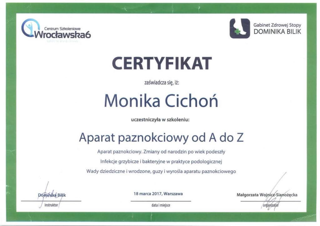 certyfikat uczestnictwa w szkoleniu Aparat paznokciowy Monika Cichoń
